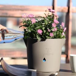 Саксия с кашпа и напоителна система Hydro Pot Канелка