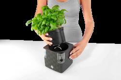 Саксия за билки Cobble 14 с напоителна система