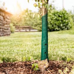 Предпазна лента за дръвчета