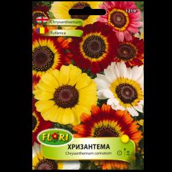 Семена Хризантема