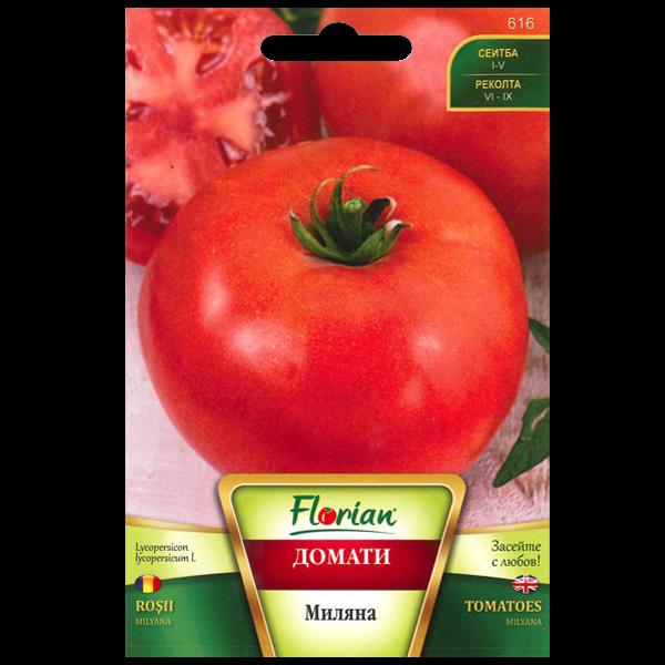 Семена домат Миляна